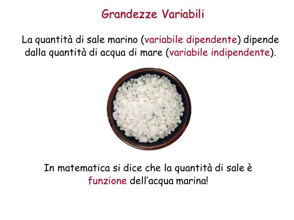 Grandezze Variabili La quantità di sale marino (variabile dipendente) dipende dalla quantità di acqua di mare (variabile indipendente).