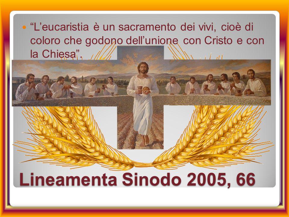 """Lineamenta Sinodo 2005, 66 """"L'eucaristia è un sacramento dei vivi, cioè di coloro che godono dell'unione con Cristo e con la Chiesa""""."""
