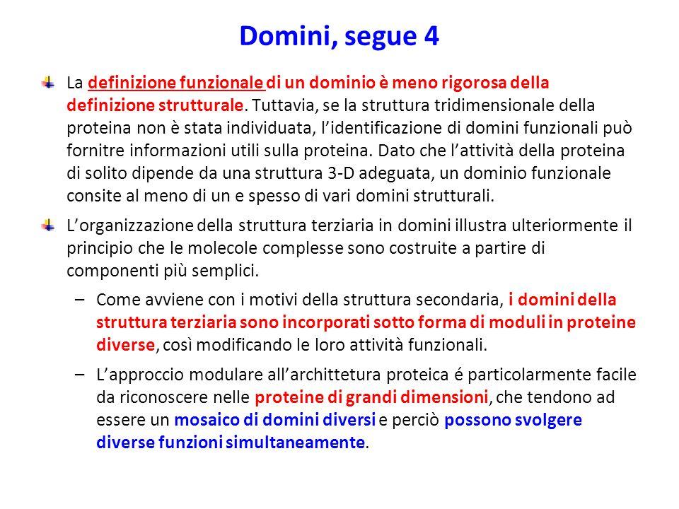 Domini, segue 4 La definizione funzionale di un dominio è meno rigorosa della definizione strutturale. Tuttavia, se la struttura tridimensionale della