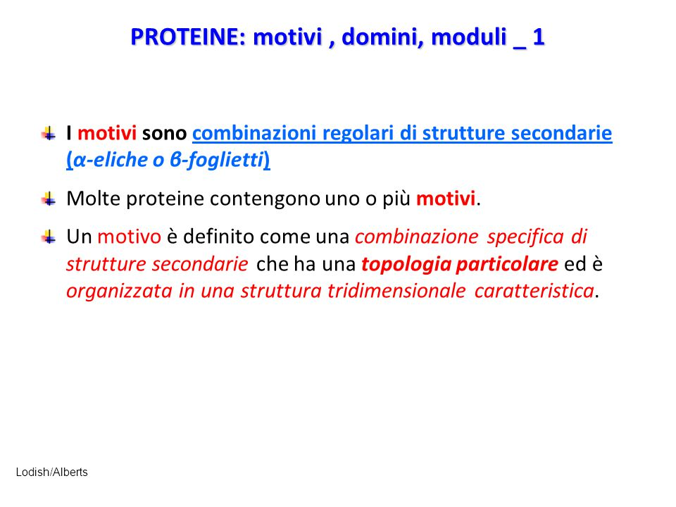PROTEINE: motivi, domini, moduli _ 1 I motivi sono combinazioni regolari di strutture secondarie (α-eliche o β-foglietti) Molte proteine contengono un