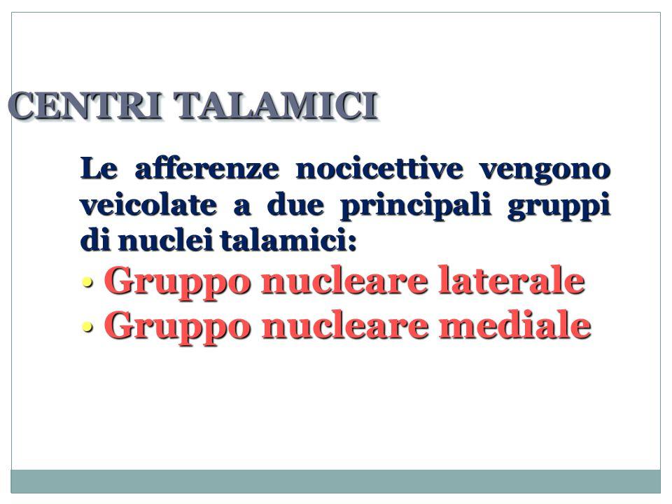 CENTRI TALAMICI Le afferenze nocicettive vengono veicolate a due principali gruppi di nuclei talamici: Gruppo nucleare laterale Gruppo nucleare laterale Gruppo nucleare mediale Gruppo nucleare mediale