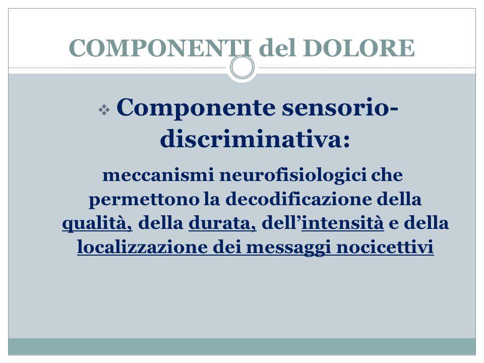 COMPONENTI del DOLORE  Componente sensorio- discriminativa: meccanismi neurofisiologici che permettono la decodificazione della qualità, della durata, dell'intensità e della localizzazione dei messaggi nocicettivi