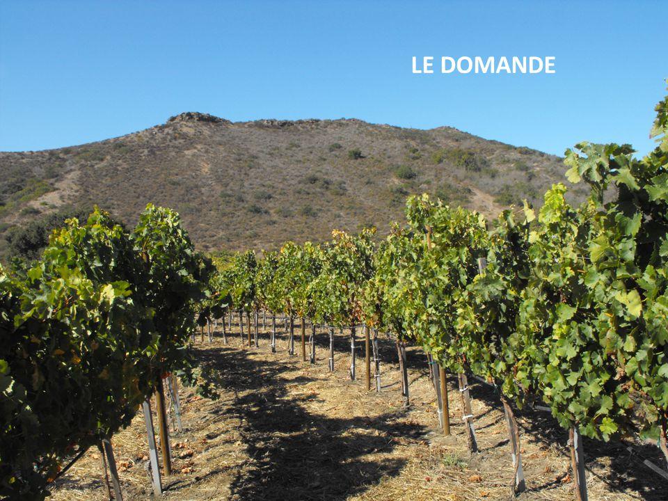 Domande : 1: Come sfruttare la notorietà di un vino per fare scoprire un territorio.