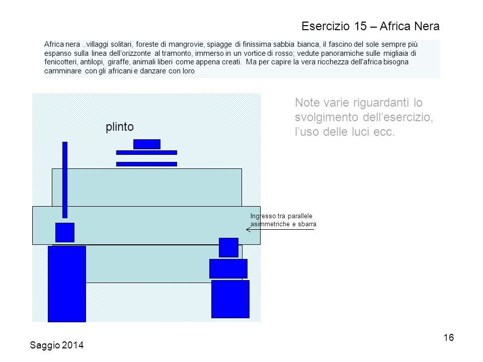 Saggio 2014 16 Esercizio 15 – Africa Nera Note varie riguardanti lo svolgimento dell'esercizio, l'uso delle luci ecc.