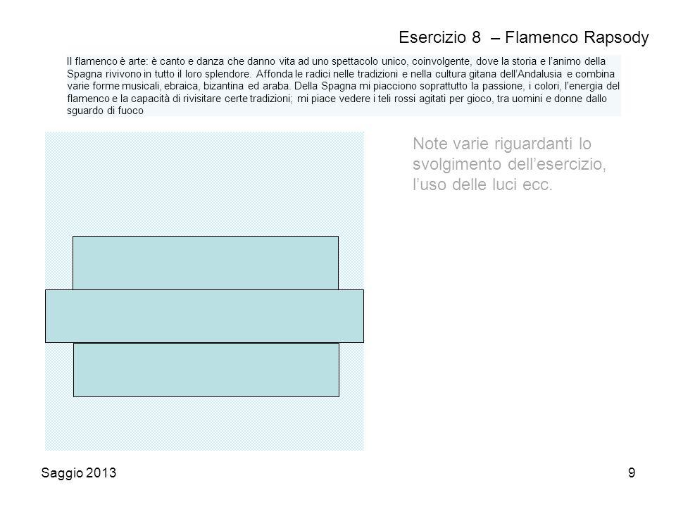 Saggio 20139 Esercizio 8 – Flamenco Rapsody Note varie riguardanti lo svolgimento dell'esercizio, l'uso delle luci ecc.