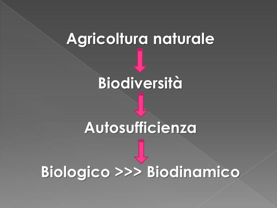 Agricoltura naturale BiodiversitàAutosufficienza Biologico >>> Biodinamico