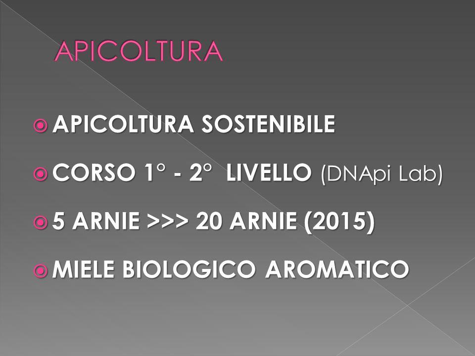  APICOLTURA SOSTENIBILE  CORSO 1° - 2° LIVELLO (DNApi Lab)  5 ARNIE >>> 20 ARNIE (2015)  MIELE BIOLOGICO AROMATICO