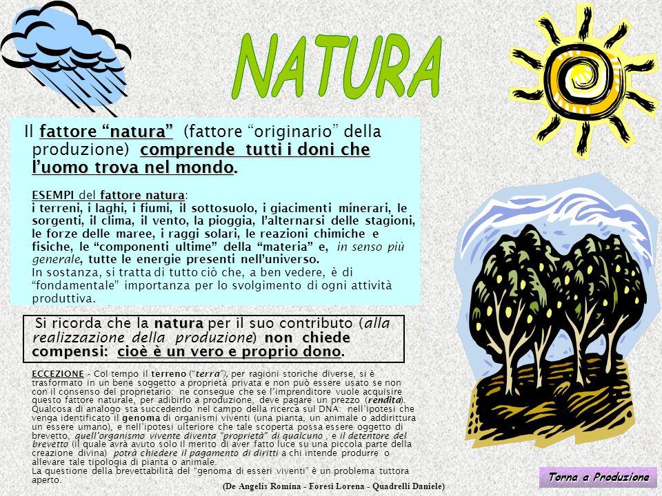 """(De Angelis Romina - Foresi Lorena - Quadrelli Daniele) natura"""" comprende tutti i doni che l'uomo trova nel mondo. fattore natura Il fattore """"natura"""""""