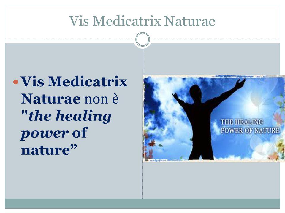 Vis Medicatrix Naturae Vis Medicatrix Naturae non è