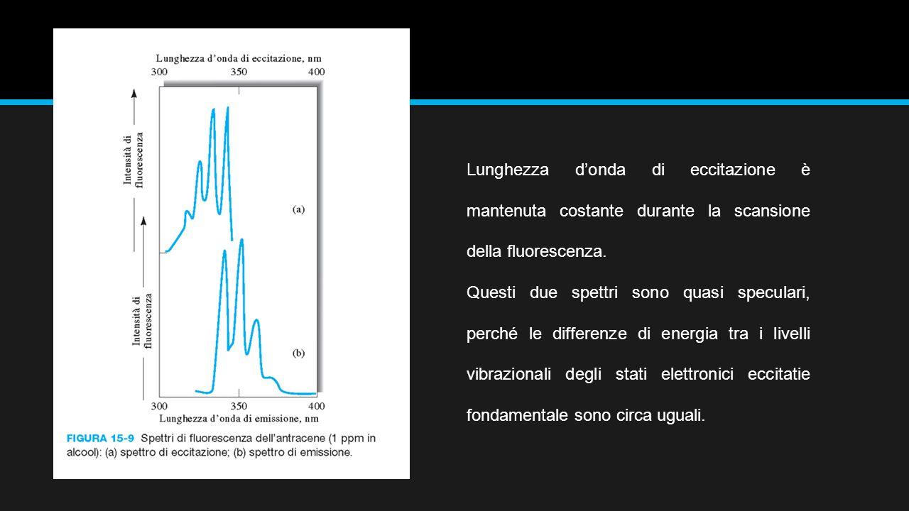 Lunghezza d'onda di eccitazione è mantenuta costante durante la scansione della fluorescenza.