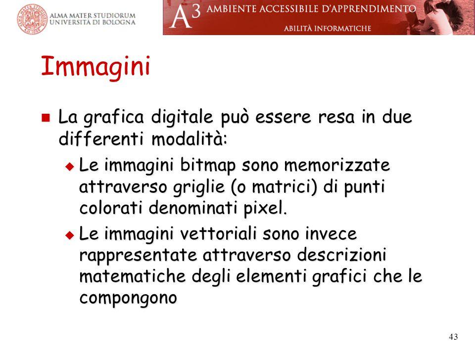 Immagini La grafica digitale può essere resa in due differenti modalità: La grafica digitale può essere resa in due differenti modalità:  Le immagini