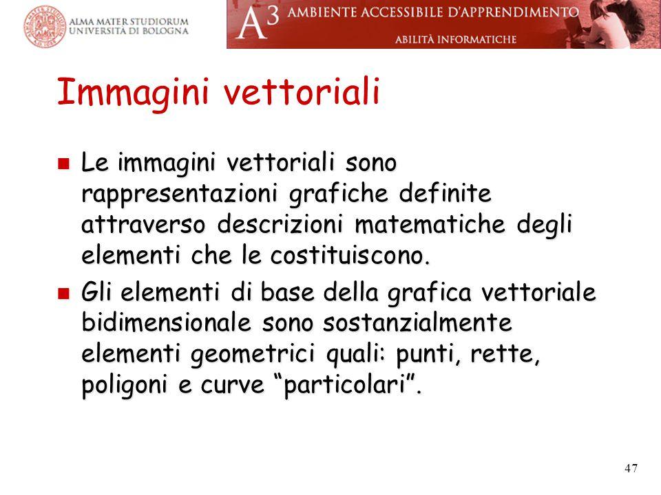 Immagini vettoriali Le immagini vettoriali sono rappresentazioni grafiche definite attraverso descrizioni matematiche degli elementi che le costituisc
