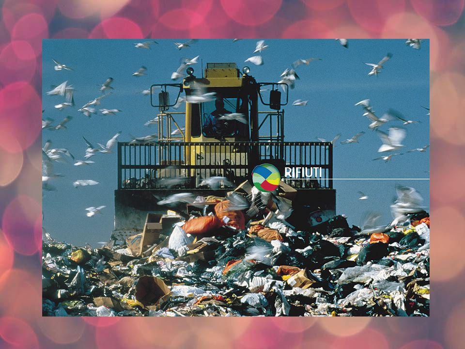 La natura non produce rifiuti Nella Natura intelligente non esistono i rifiuti; non si butta via niente perché tutto può essere riutilizzato e servire alla creazione di qualcos altro.
