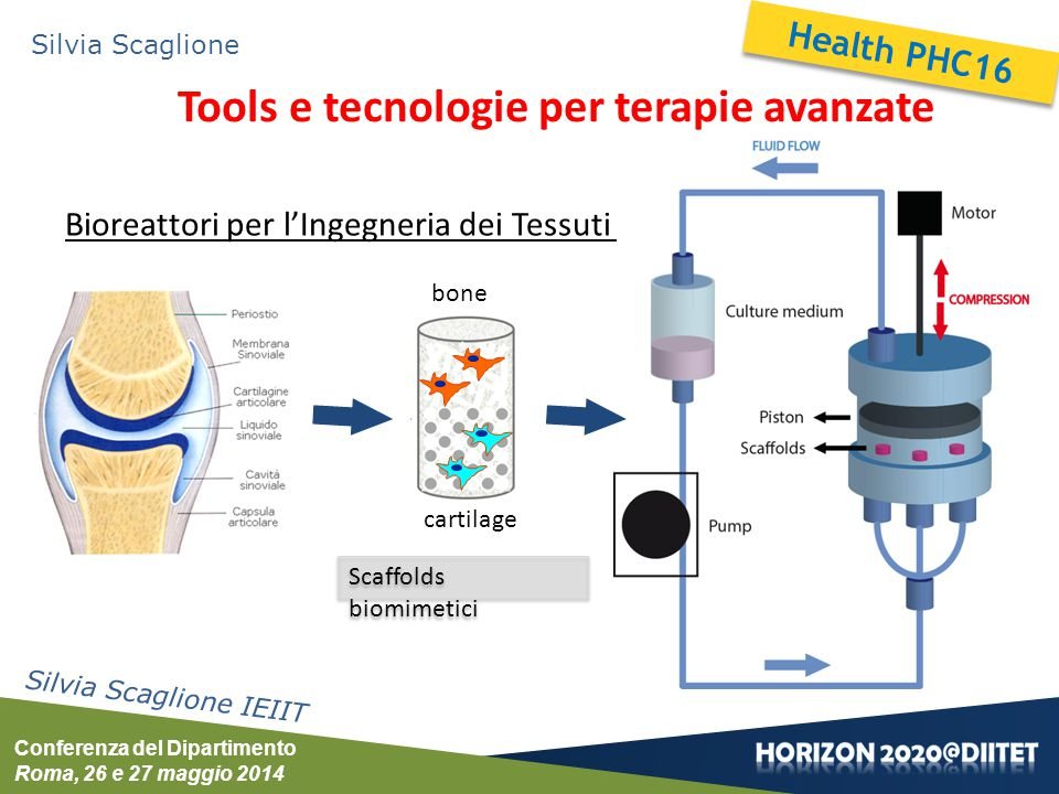 Conferenza del Dipartimento Roma, 26 e 27 maggio 2014 Silvia Scaglione Tools e tecnologie per terapie avanzate Silvia Scaglione IEIIT bone cartilage B