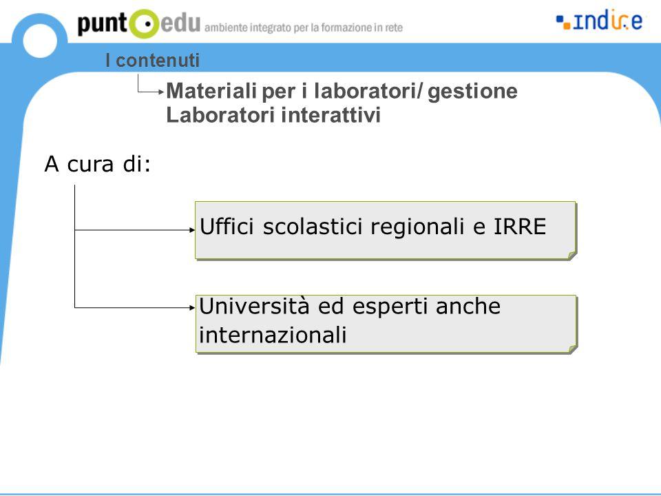 I contenuti Uffici scolastici regionali e IRRE Materiali per i laboratori/ gestione Laboratori interattivi A cura di: Università ed esperti anche inte