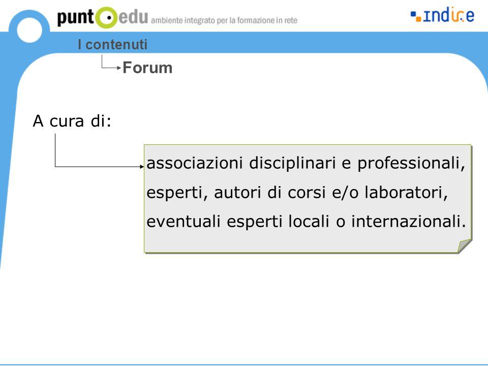 I contenuti Forum associazioni disciplinari e professionali, esperti, autori di corsi e/o laboratori, eventuali esperti locali o internazionali. A cur