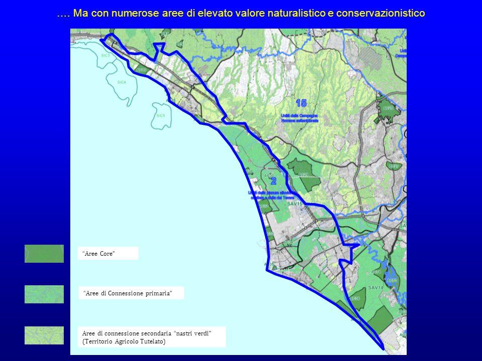 Aree Core Aree di Connessione primaria Aree di connessione secondaria nastri verdi (Territorio Agricolo Tutelato) ….