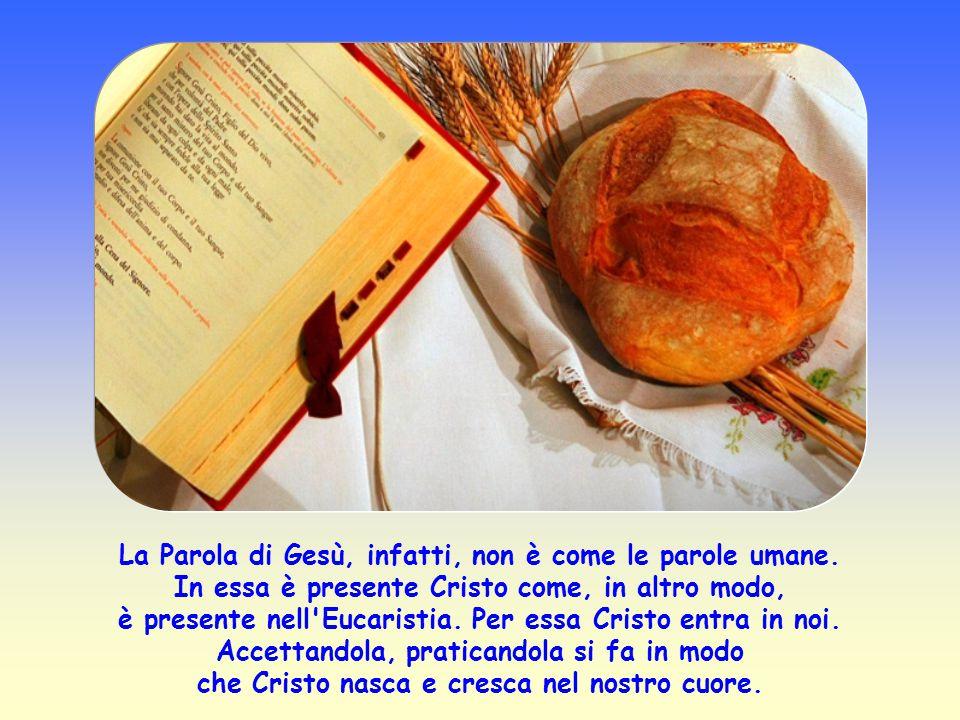 Secondo Gesù vi è un mezzo per essere puri, ed è la sua Parola. Quella Parola che i discepoli hanno udito, cui hanno aderito, li ha purificati.