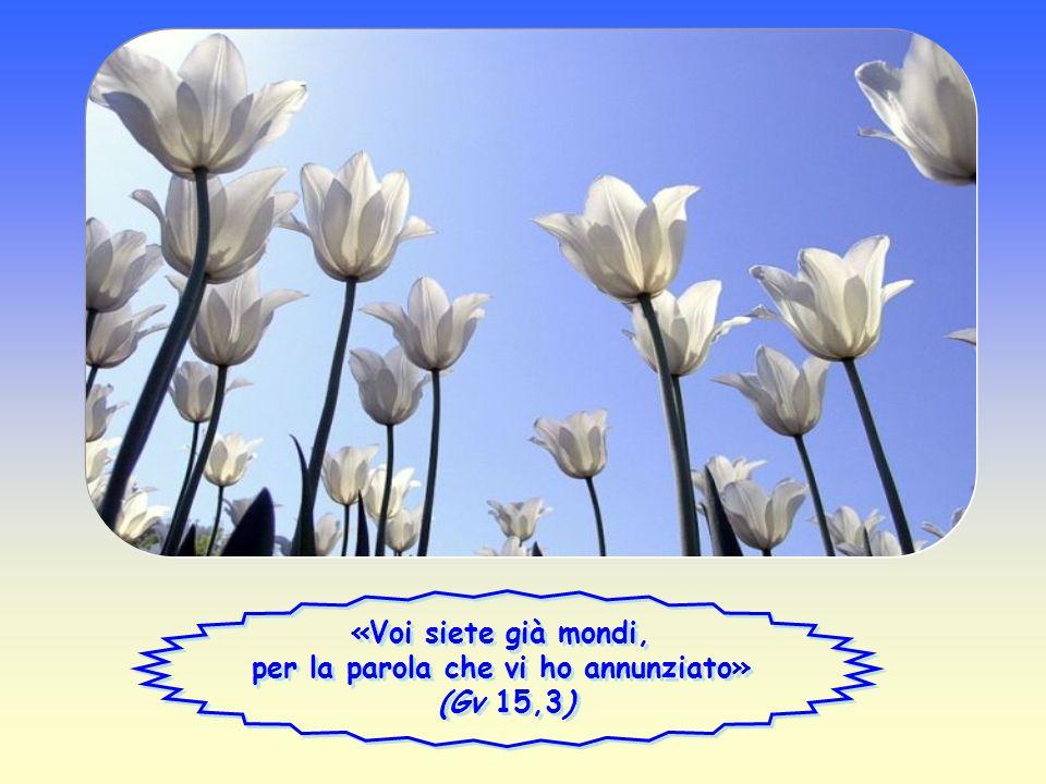 Parola di Vita Parola di Vita Aprile 2012 Aprile 2012