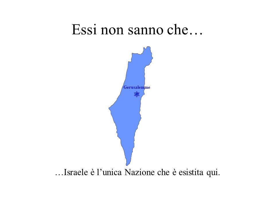 Gerusalemme Essi non sanno che… …nessun altro popolo ha creato uno stato per sostituire Israele.