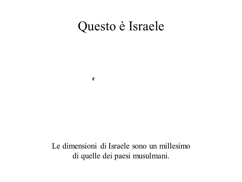  Gerusalemme Essi non sanno che… …il popolo ebraico è stato espulso forzatamente da Israele.