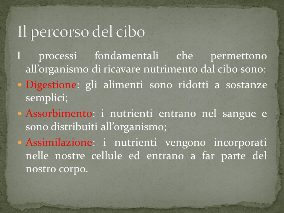 I processi fondamentali che permettono all'organismo di ricavare nutrimento dal cibo sono: Digestione: gli alimenti sono ridotti a sostanze semplici; Assorbimento: i nutrienti entrano nel sangue e sono distribuiti all'organismo; Assimilazione: i nutrienti vengono incorporati nelle nostre cellule ed entrano a far parte del nostro corpo.