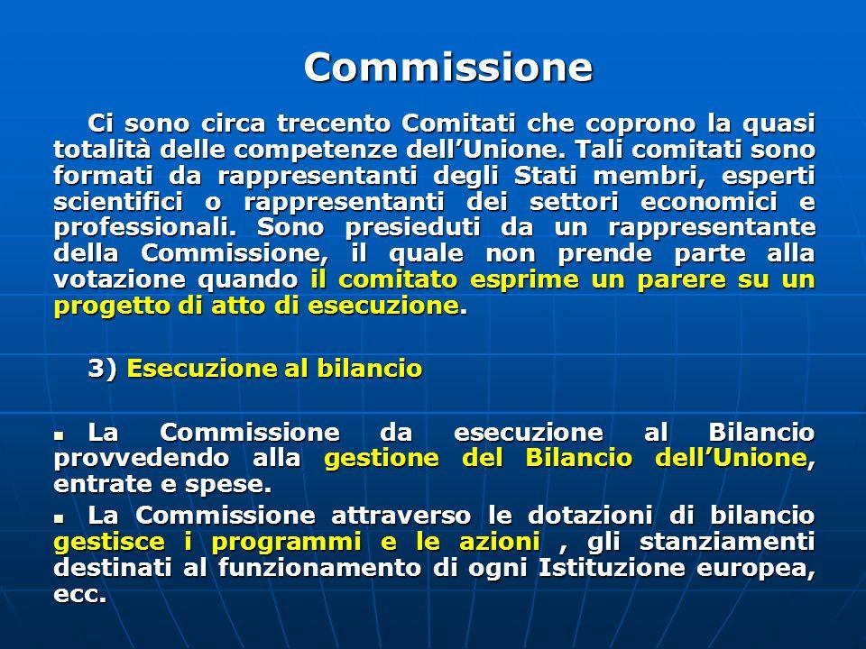 Ci sono circa trecento Comitati che coprono la quasi totalità delle competenze dell'Unione.