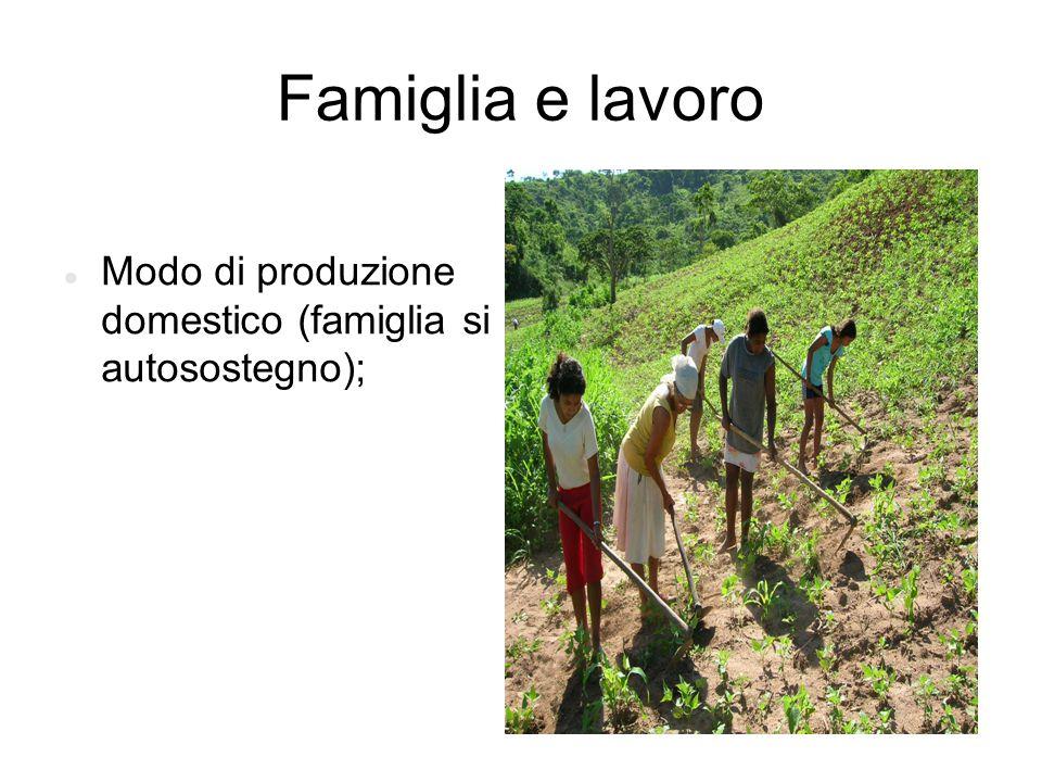 Famiglia e lavoro Modo di produzione domestico (famiglia si autosostegno);