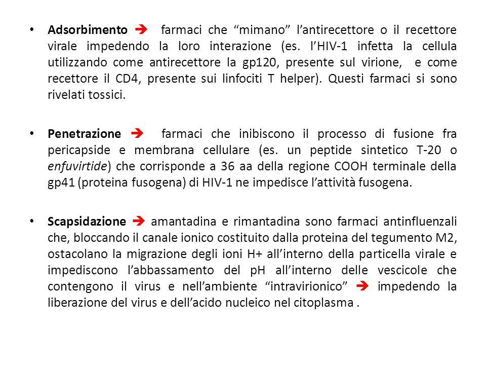 """Adsorbimento  farmaci che """"mimano"""" l'antirecettore o il recettore virale impedendo la loro interazione (es. l'HIV-1 infetta la cellula utilizzando co"""