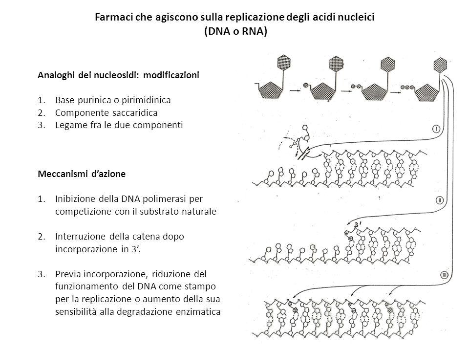 Farmaci che agiscono sulla replicazione degli acidi nucleici (DNA o RNA) Analoghi dei nucleosidi: modificazioni 1.Base purinica o pirimidinica 2.Compo