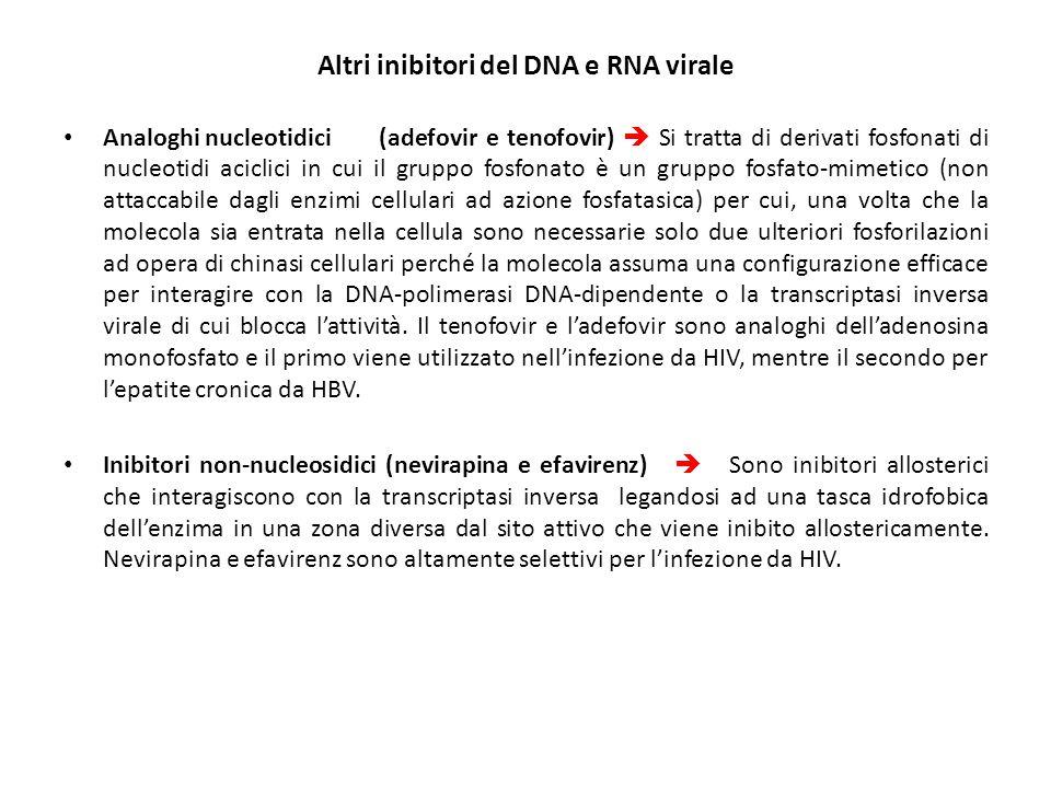 Altri inibitori del DNA e RNA virale Analoghi nucleotidici(adefovir e tenofovir)  Si tratta di derivati fosfonati di nucleotidi aciclici in cui il gr