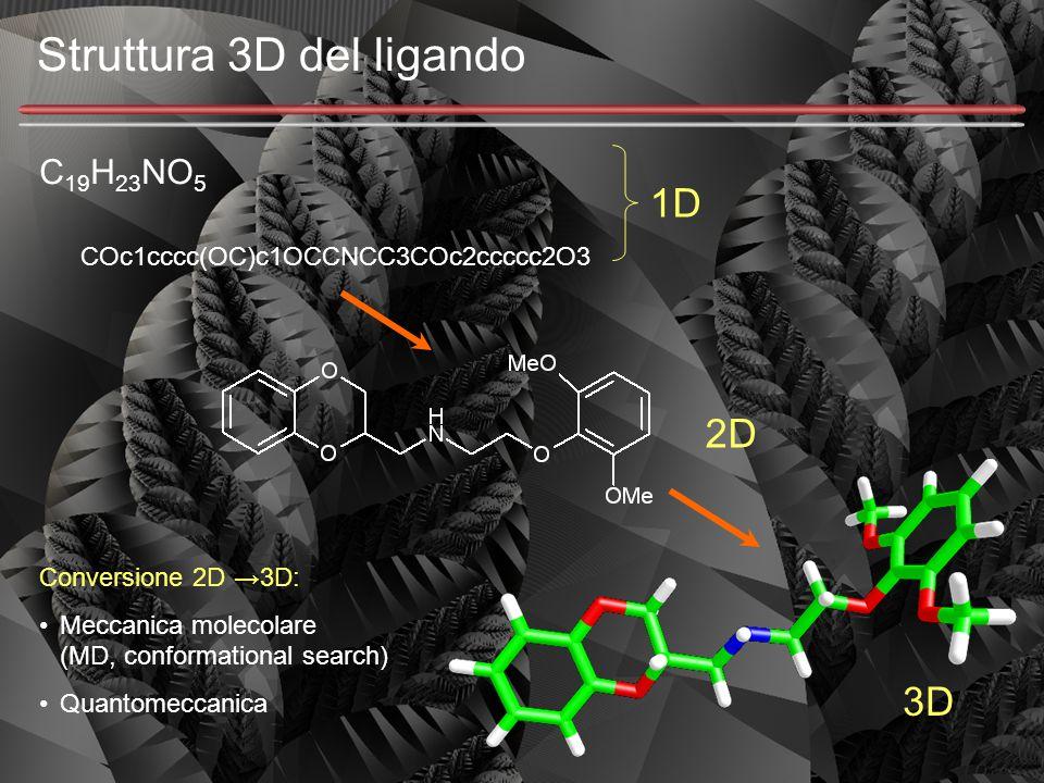 Struttura 3D del ligando C 19 H 23 NO 5 COc1cccc(OC)c1OCCNCC3COc2ccccc2O3 1D 2D 3D Conversione 2D →3D: Meccanica molecolare (MD, conformational search