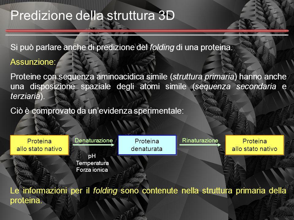 Predizione della struttura 3D Si può parlare anche di predizione del folding di una proteina. Assunzione: Proteine con sequenza aminoacidica simile (s
