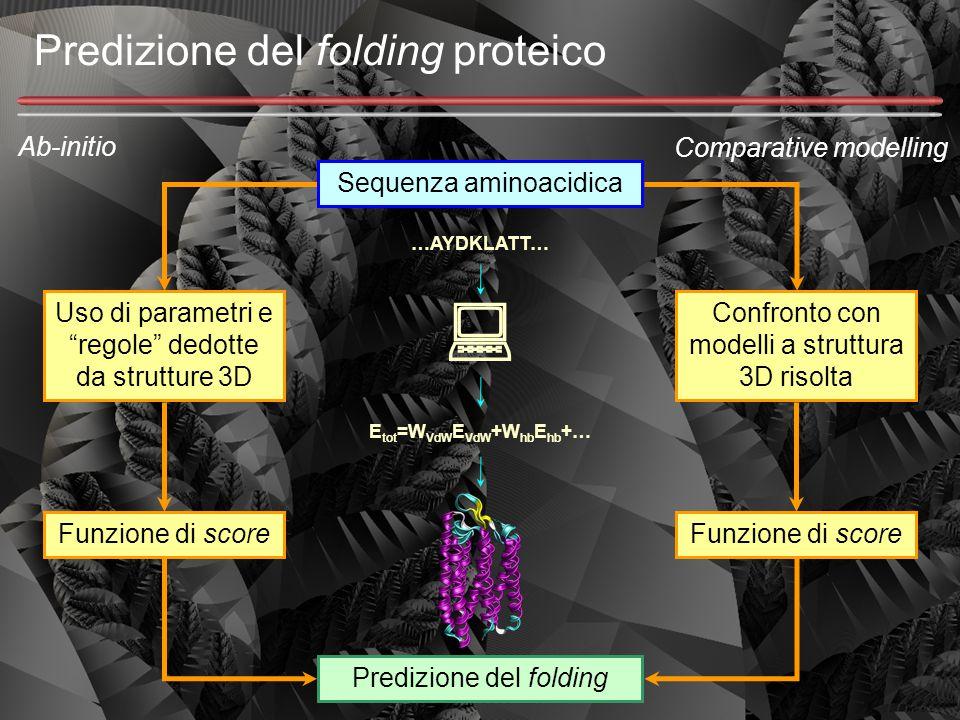 Predizione del folding proteico Sequenza aminoacidica …AYDKLATT…  E tot =W VdW E VdW +W hb E hb +… Ab-initio Comparative modelling Confronto con mode