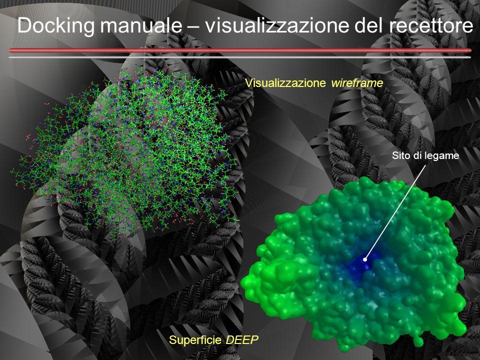 Docking manuale – visualizzazione del recettore Visualizzazione wireframe Superficie DEEP Sito di legame
