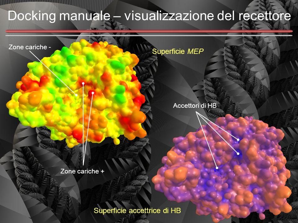 Docking manuale – visualizzazione del recettore Superficie MEP Superficie accettrice di HB Accettori di HB Zone cariche + Zone cariche -