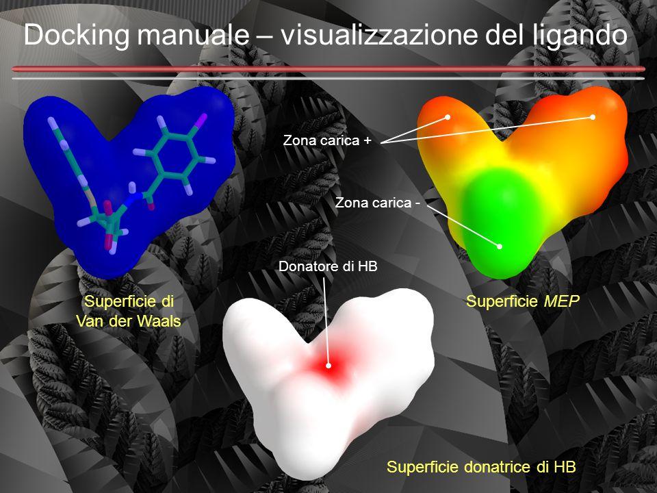 Docking manuale – visualizzazione del ligando Zona carica - Superficie donatrice di HB Superficie MEPSuperficie di Van der Waals Zona carica + Donator