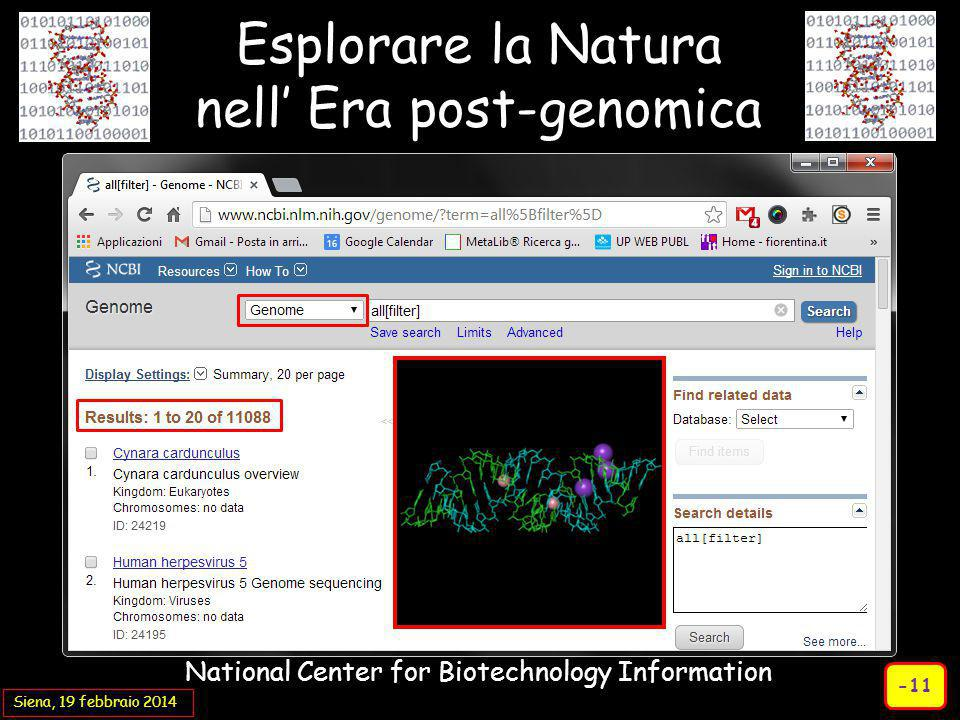 Siena, 19 febbraio 2014 Esplorare la Natura nell' Era post-genomica National Center for Biotechnology Information -11