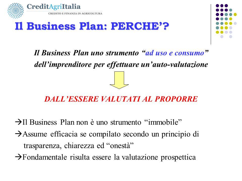 """Il Business Plan: PERCHE'? Il Business Plan uno strumento """"ad uso e consumo"""" dell'imprenditore per effettuare un'auto-valutazione DALL'ESSERE VALUTATI"""