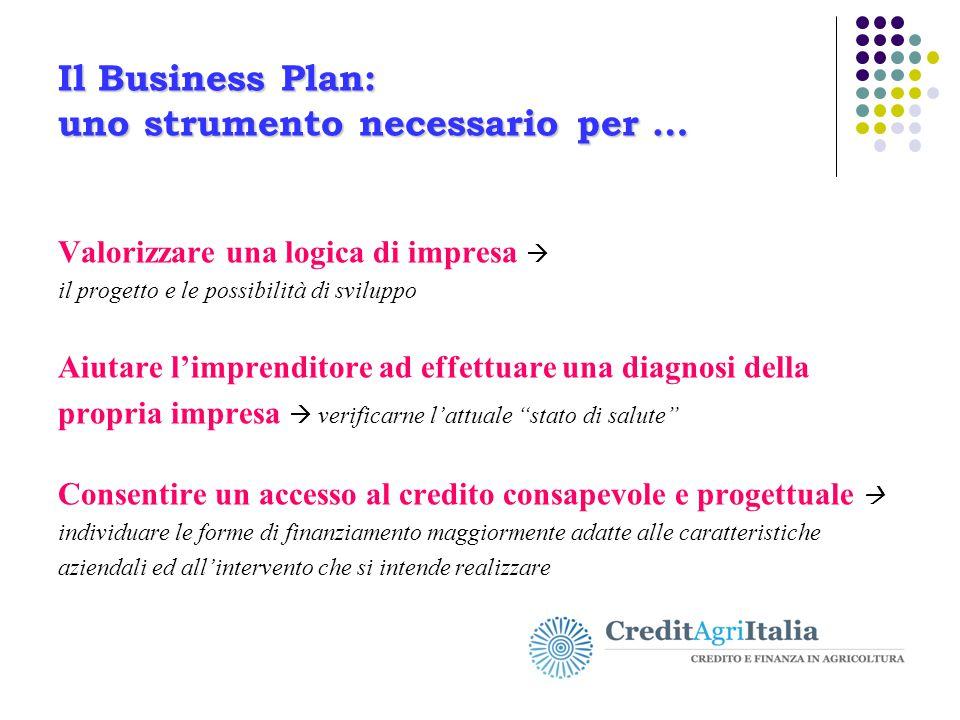 Il Business Plan: uno strumento necessario per … Valorizzare una logica di impresa  il progetto e le possibilità di sviluppo Aiutare l'imprenditore a