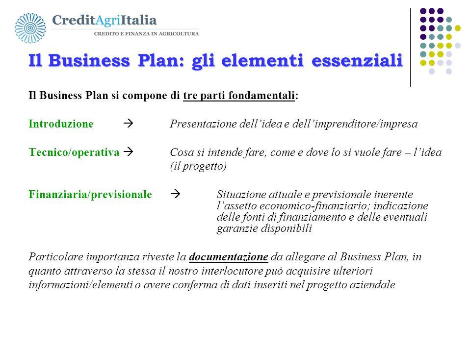 Il Business Plan: gli elementi essenziali Il Business Plan si compone di tre parti fondamentali: Introduzione  Presentazione dell'idea e dell'imprend