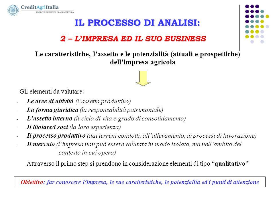IL PROCESSO DI ANALISI: 2 – L'IMPRESA ED IL SUO BUSINESS Le caratteristiche, l'assetto e le potenzialità (attuali e prospettiche) dell'impresa agricol