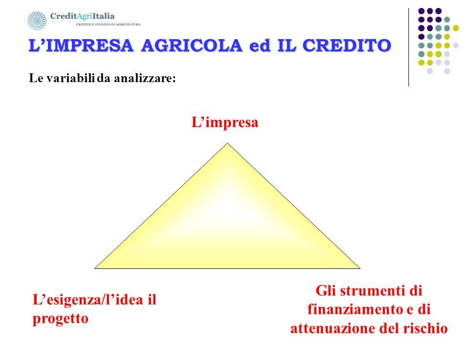 L'IMPRESA AGRICOLA ed IL CREDITO L'esigenza/l'idea il progetto L'impresa Gli strumenti di finanziamento e di attenuazione del rischio Le variabili da