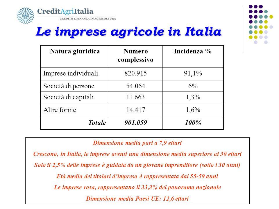 Le imprese agricole in Italia Le imprese agricole in Italia Natura giuridicaNumero complessivo Incidenza % Imprese individuali820.91591,1% Società di