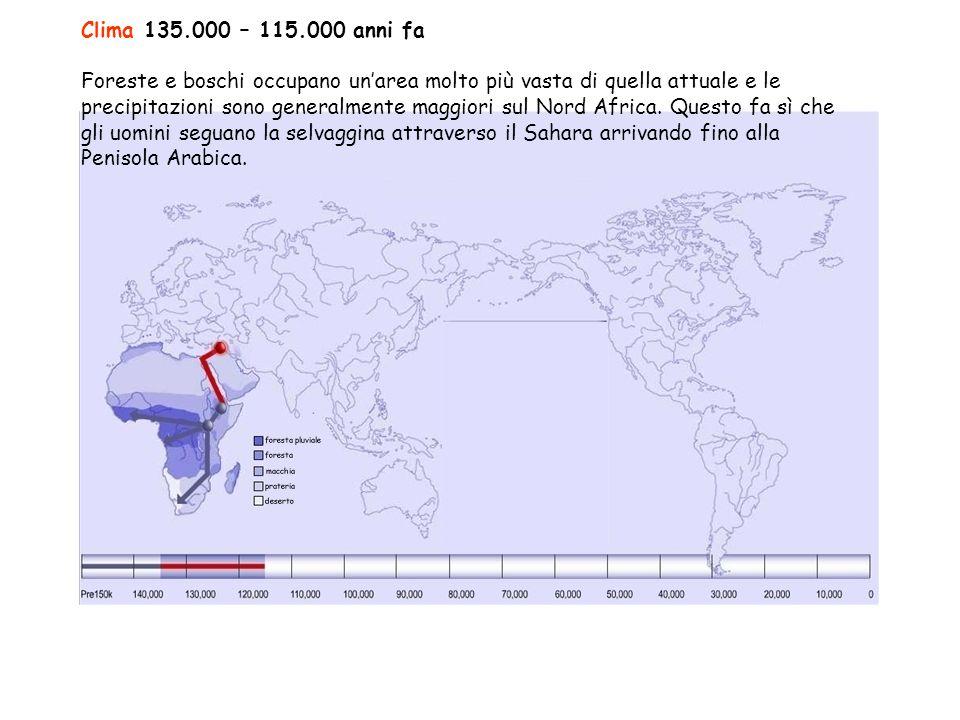 Clima 135.000 – 115.000 anni fa Foreste e boschi occupano un'area molto più vasta di quella attuale e le precipitazioni sono generalmente maggiori sul Nord Africa.