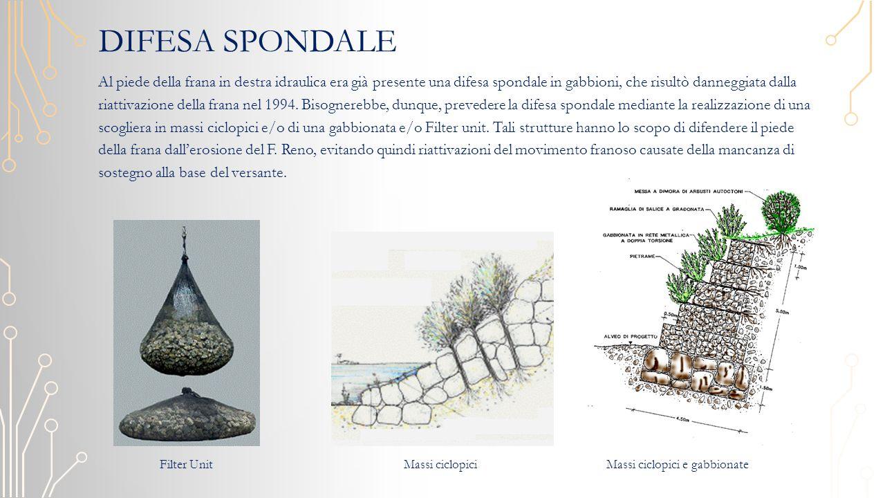 DIFESA SPONDALE Al piede della frana in destra idraulica era già presente una difesa spondale in gabbioni, che risultò danneggiata dalla riattivazione della frana nel 1994.