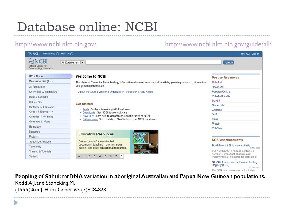 Database online: NCBI http://www.ncbi.nlm.nih.gov/http://www.ncbi.nlm.nih.gov/guide/all/ Peopling of Sahul: mtDNA variation in aboriginal Australian and Papua New Guinean populations.