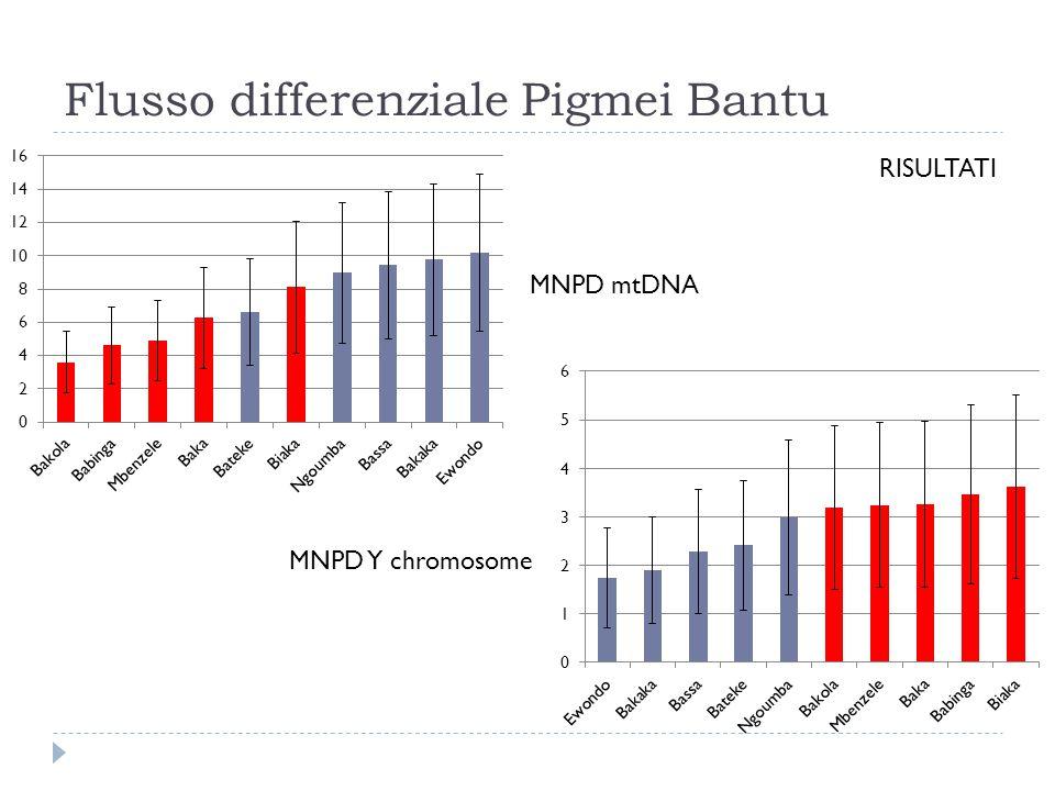 Flusso differenziale Pigmei Bantu RISULTATI MNPD mtDNA MNPD Y chromosome