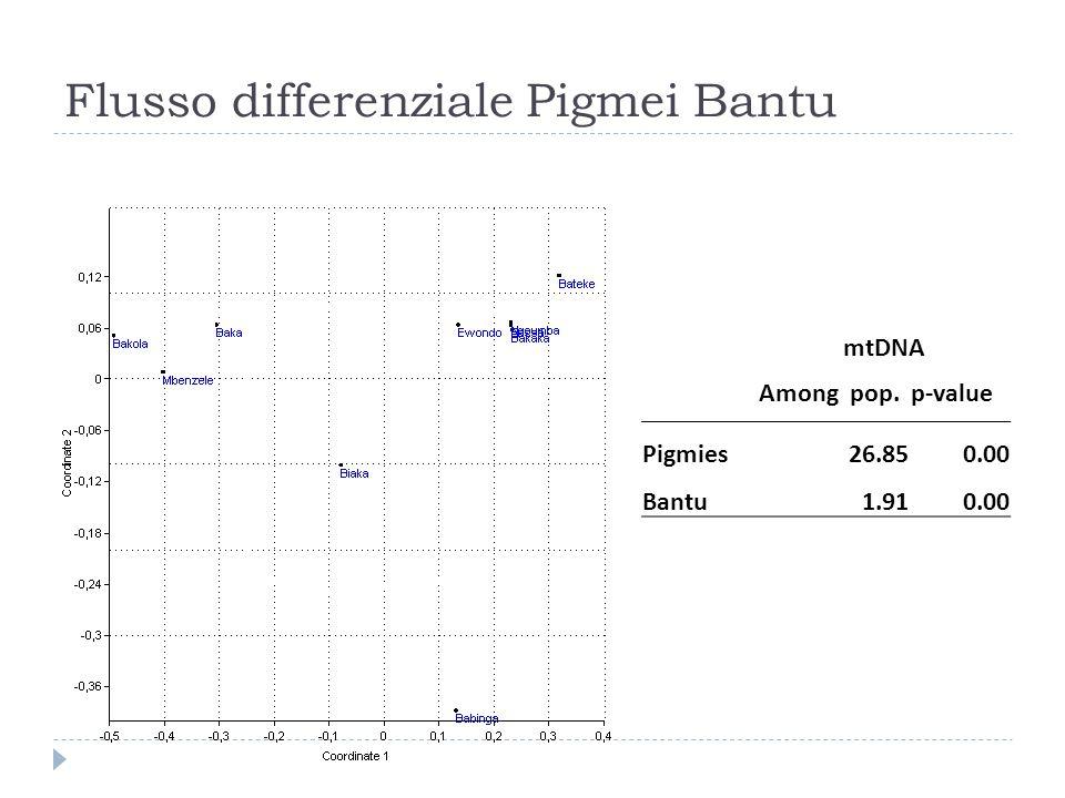mtDNA Among pop.p-value Pigmies26.850.00 Bantu1.910.00