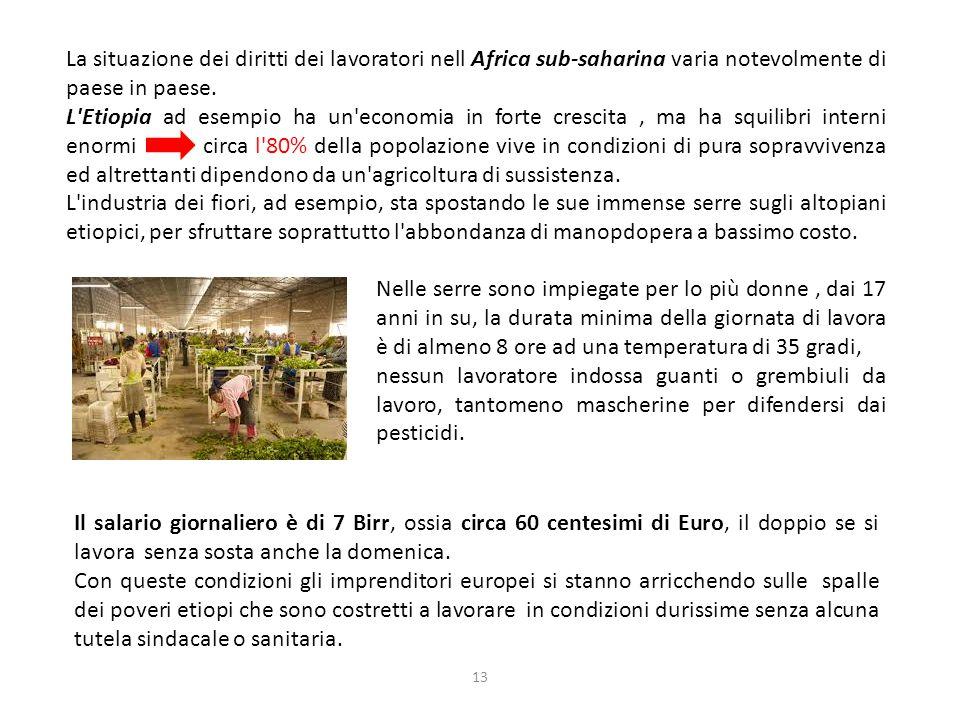 13 La situazione dei diritti dei lavoratori nell Africa sub-saharina varia notevolmente di paese in paese.